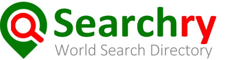 Search, Local search engine